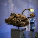 26-03The Propitious Oz Anglerfish-1