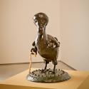 21-05The Dove of Mauritius - Dodo