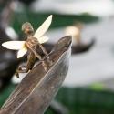 19-02Contemplative Peter Pan Bodhisattva Rides on Hornet-4