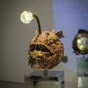 26-03The Propitious Oz Anglerfish-2