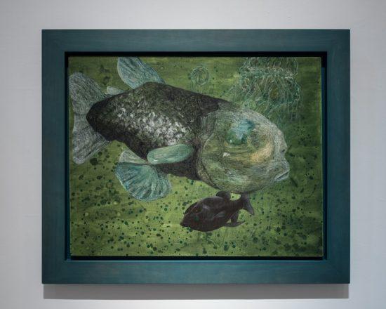 黯黑的放浪者‧太平洋桶眼魚S1706